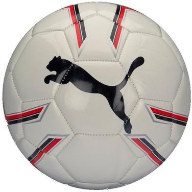 Pro Training 2 Ms Ball Beyaz Futbol Topu 08281903 1008531