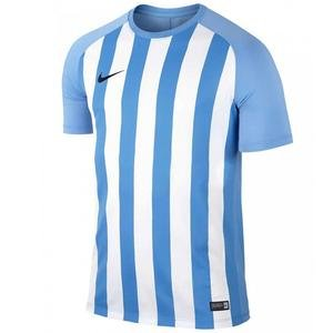 Dry Strp Sgmnt III Jsy Erkek Mavi Futbol Forma 832976-412