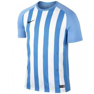 Dry Strp Sgmnt III Jsy Erkek Mavi Futbol Forma 832976-412 918969