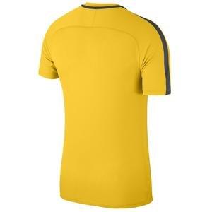 Nk Dry Academy18 Top Ss Erkek Futbol Tişörtü 893693-719