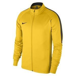 Dry Academy18 Erkek Sarı Futbol Ceket 893701-719