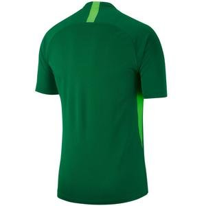 Dry Legend Jsy Erkek Yeşil Futbol Forma AJ0998-302