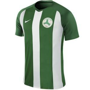 Giresunspor Erkek Yeşil Futbol Forma 894345-302-1-GRS