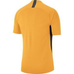Dry Legend Jsy Erkek Sari Futbol Forma Aj0998-739