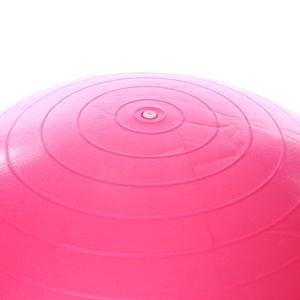 Spt Kadın Fuşya 65cm Pilates Topu SPT-2902V-PMB