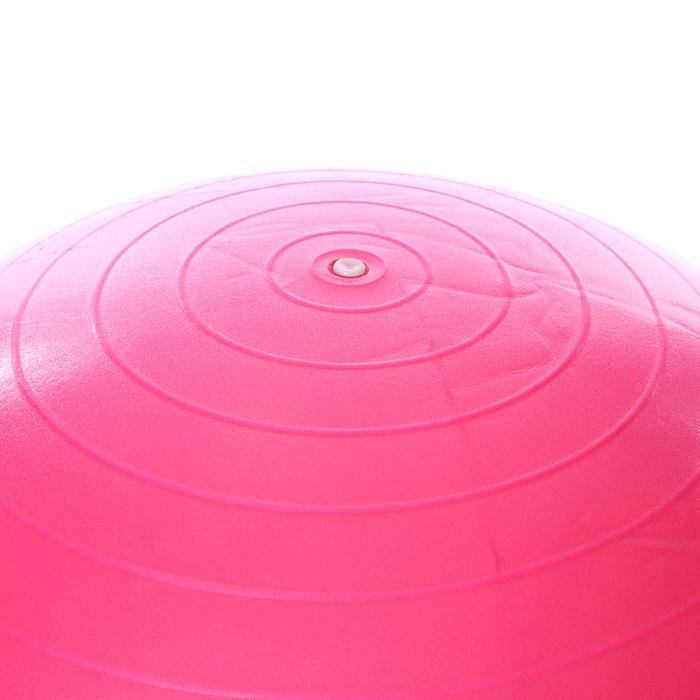 Spt Kadın Fuşya 65cm Pilates Topu SPT-2902V-PMB 1189555