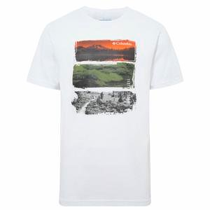 Photo Stripe Erkek Beyaz Outdoor Tişört CS0069-100