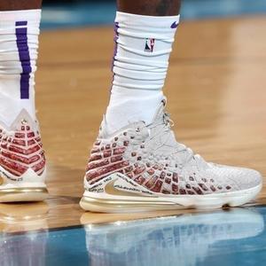 Lebron XVII Prm Erkek Çok Renkli Basketbol Ayakkabısı CT3466-001