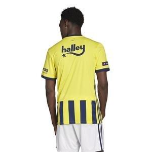 Fenerbahçe SK 2020-2021 Erkek Sarı-Lacivert İç Saha Forması GD3746