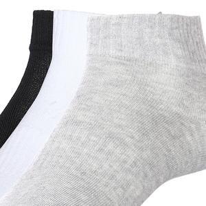 Spt Havlu 3lü Unisex Çok Renkli Günlük Stil Çorap 2013005-N-BSG-SP